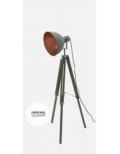 NoldenBros-FloorLamps_0000s_0013_New_Images-10July_0008_WhatsApp Image 2018-07-10 at 2.21.34 PM (3)